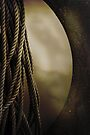 the rope and the moon by Anthony Mancuso