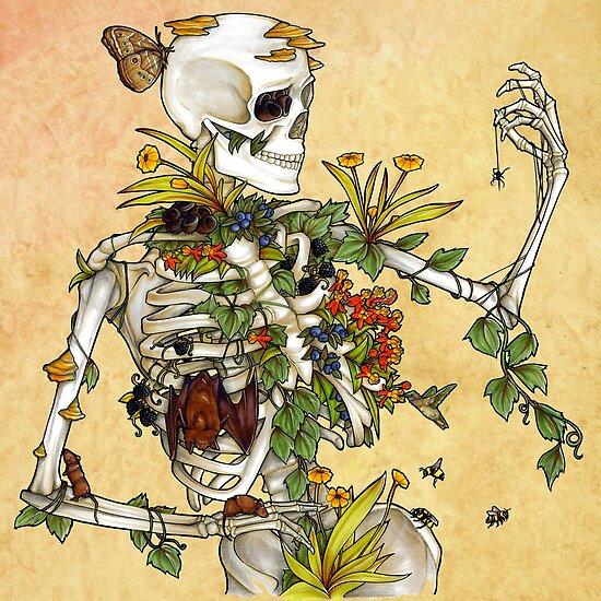 Knochen und Botanik von E Moss