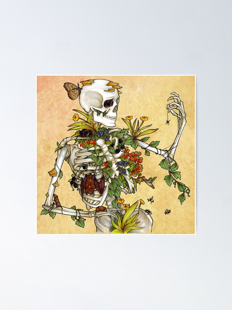 Alternate view of Bones and Botany Poster