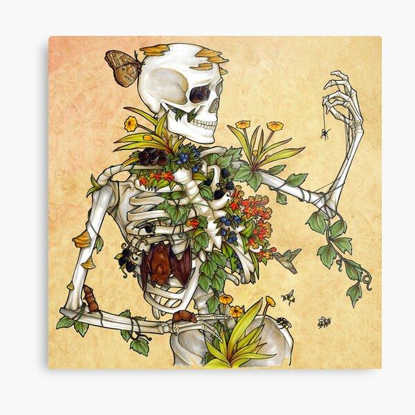 Huesos y Botánica Lámina metálica