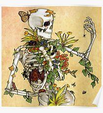 Knochen und Botanik Poster