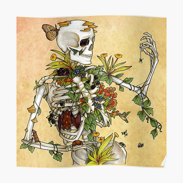 Bones and Botany Poster