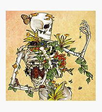 Bones and Botany Photographic Print