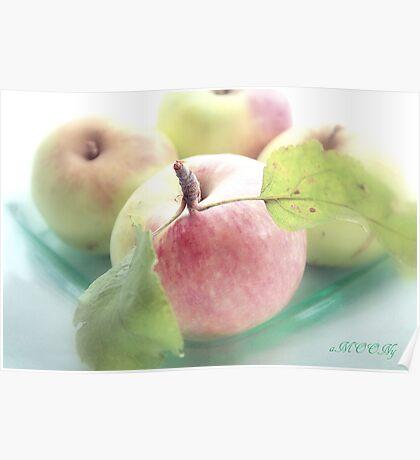 Summer apples 2 Poster