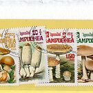 01-08-10 Mushroom Stamps and the watercolored Mushrooms by BuaS