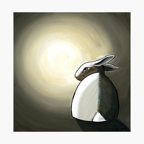 Bunny Moods Photographic Print