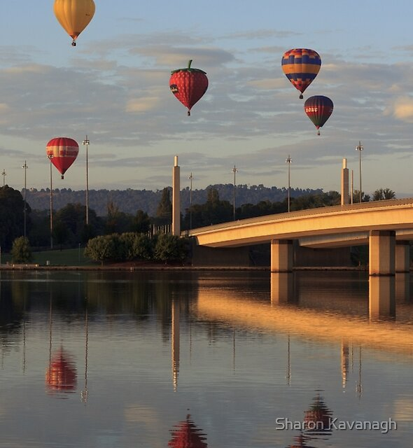 Reflective Mood_Canberra by Sharon Kavanagh