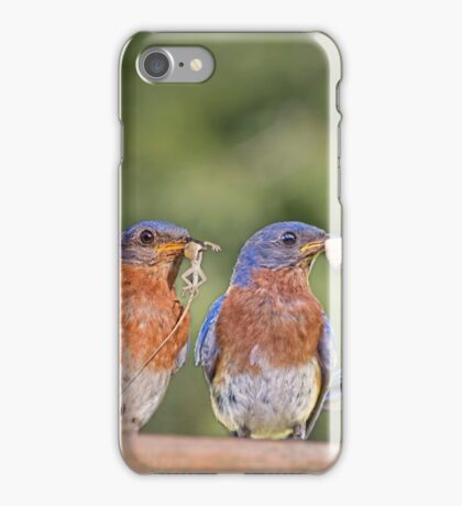 Blue Plate Special iPhone Case/Skin