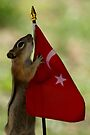 Jasper's Young Intern With the Flag of Turkey by Betsy  Seeton