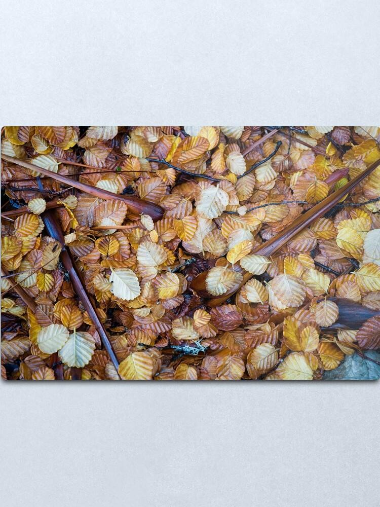 Alternate view of Forest floor Metal Print