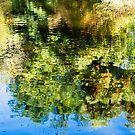 Reflections in the Mersey, Latrobe by Mel Brackstone