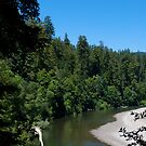 Eel River in August #1 by Josef Grosch