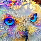 «Búho de Atenea» de Kestrelle