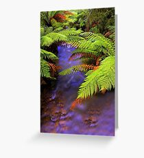 """Ferns~Creek"" Greeting Card"