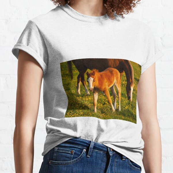baby horse and mother Classic T-Shirt