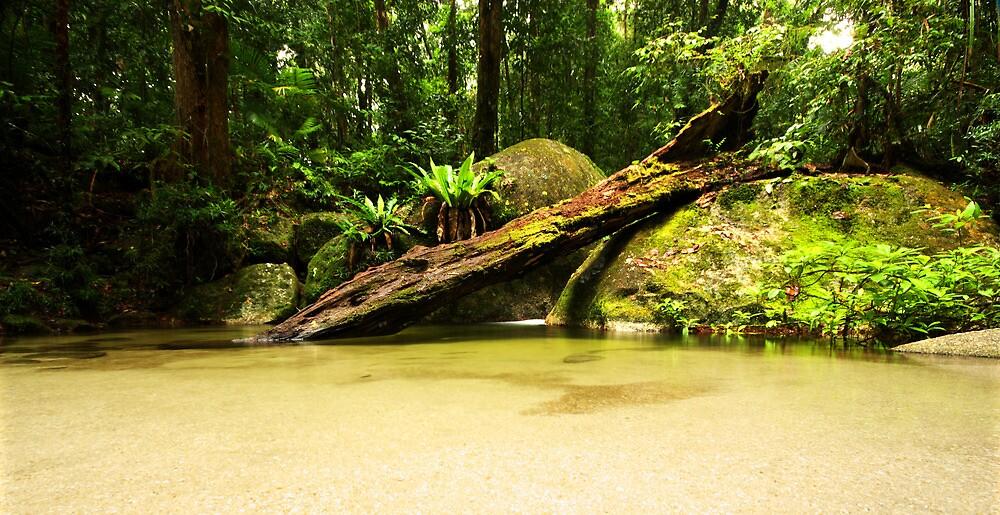 Wurrmbu Creek by Matt  Williams