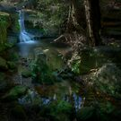 A Little Creek With A Bit of a Waterfall by Jeff Catford