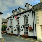 The Red Lion,Hawkshead by Jamie  Green