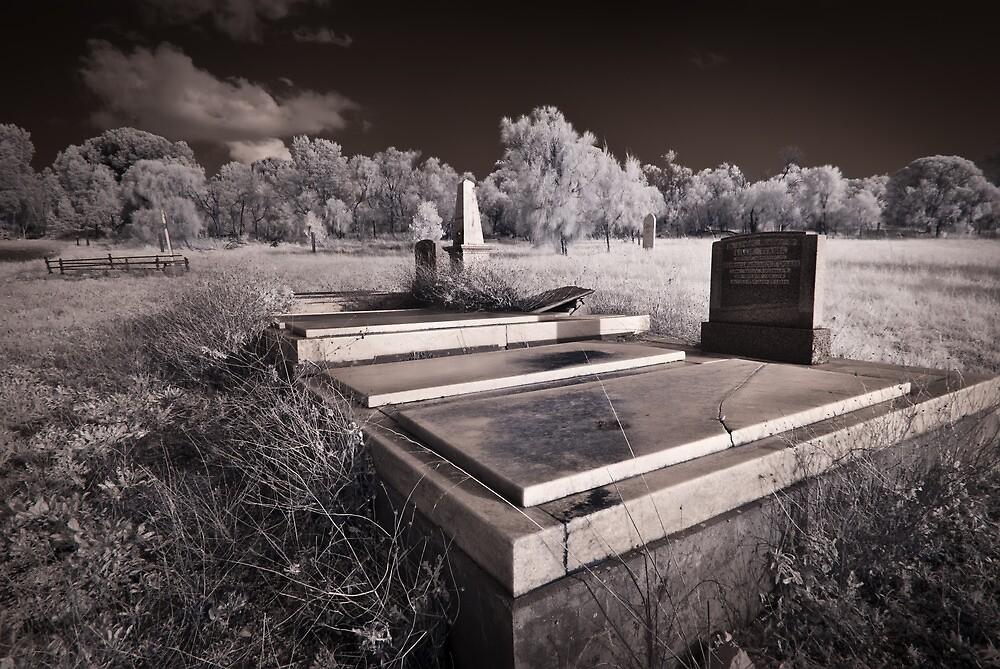 Long Gone by Craig Hender