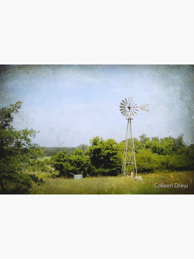 Texas Windmill by colgdrew