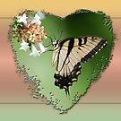 For the Queen of the Butterflies by Bonnie T.  Barry