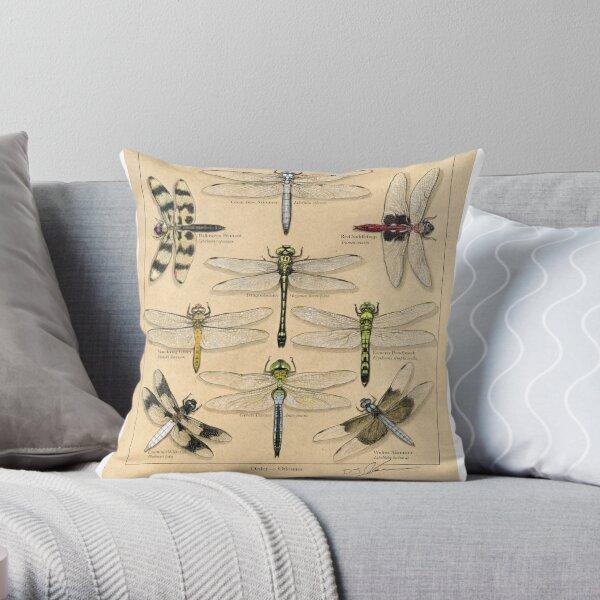 Odonate Plate Illustration Throw Pillow
