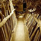 Sepia bridge by Arie Koene