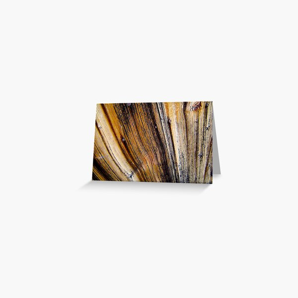 door wood Greeting Card