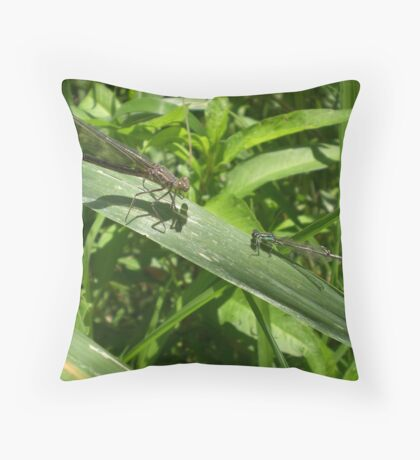 Two Dragonflies Throw Pillow