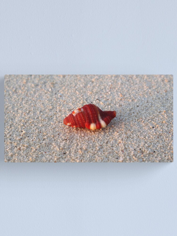 Alternate view of Perfection in Miniature Canvas Print