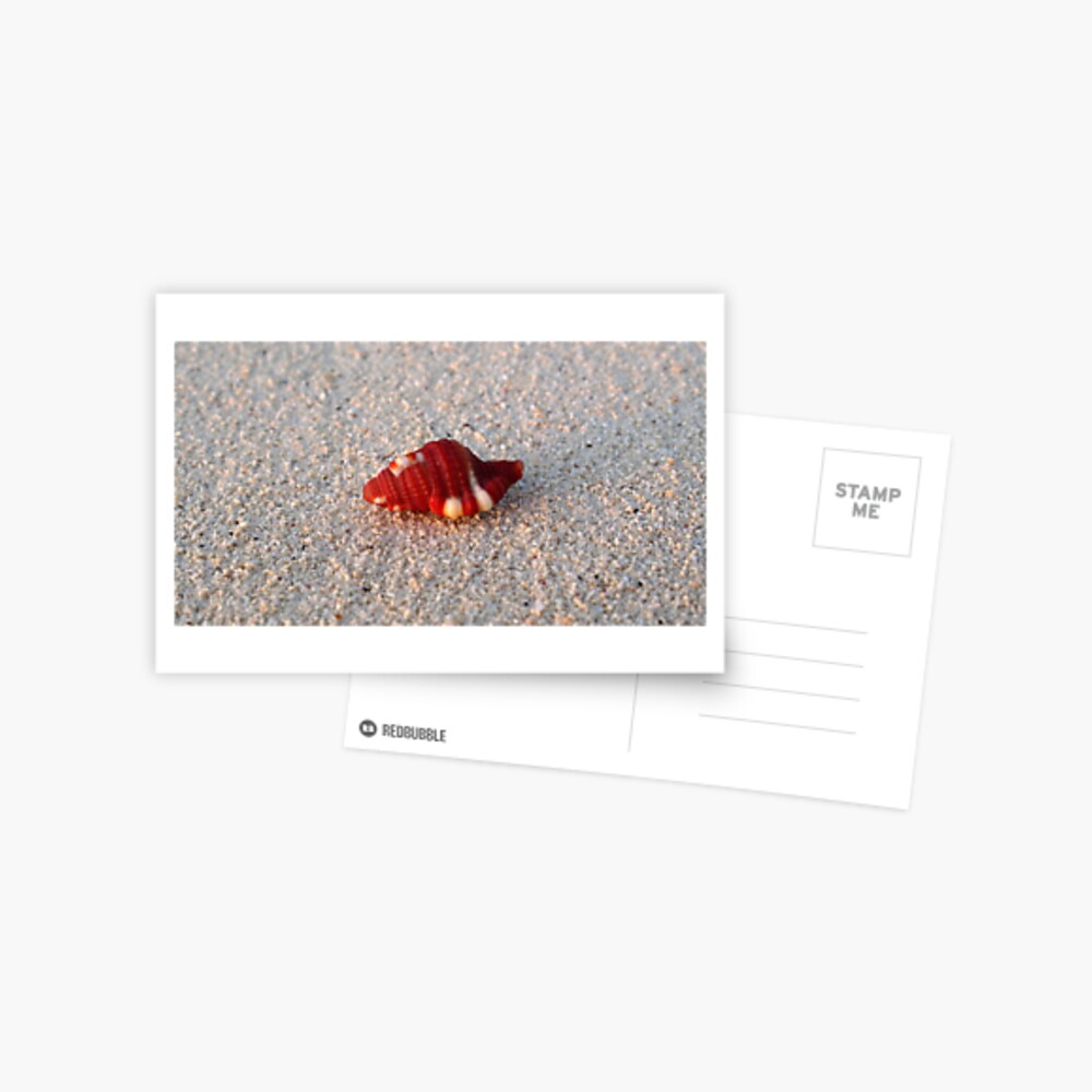 Perfection in Miniature Postcard
