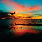 «mundo hermoso» de john herbert