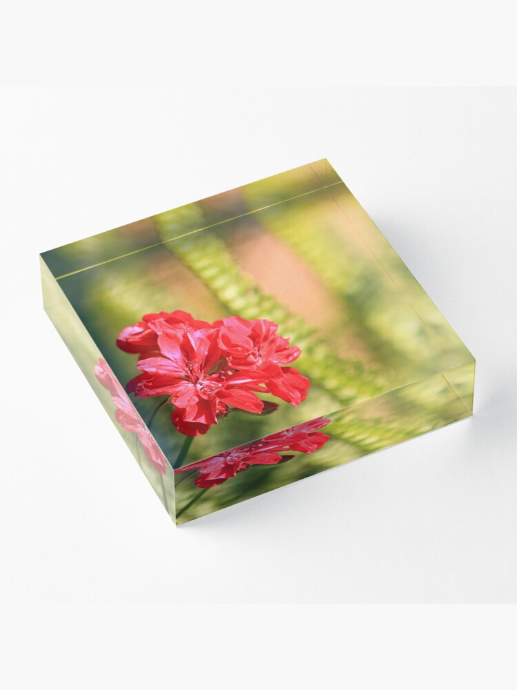 Alternate view of Perfect conditions to bloom Acrylic Block