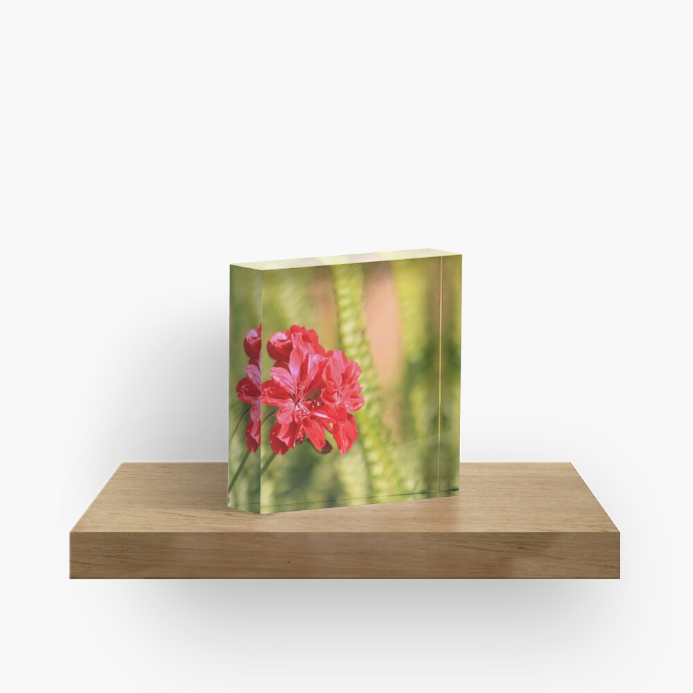 Perfect conditions to bloom Acrylic Block