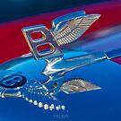 Flying B by Hawley Designs