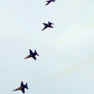 Angel Fall - Blue Angels Arctic Thunder 2010 by copperhead