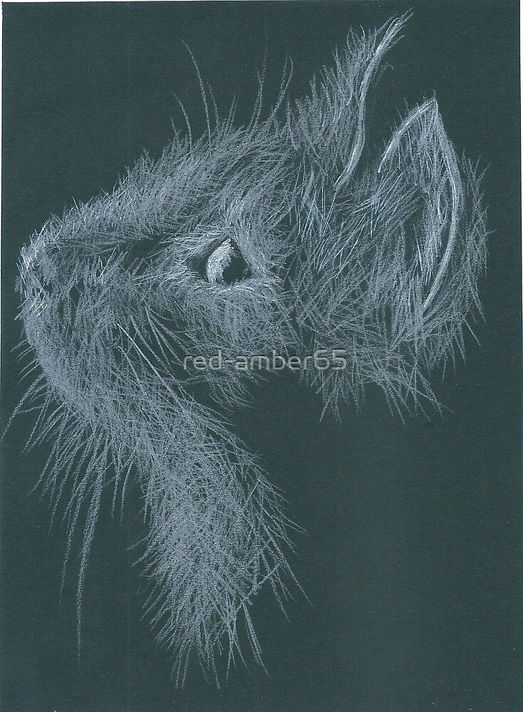 Cat - white pencil on black by red-amber65