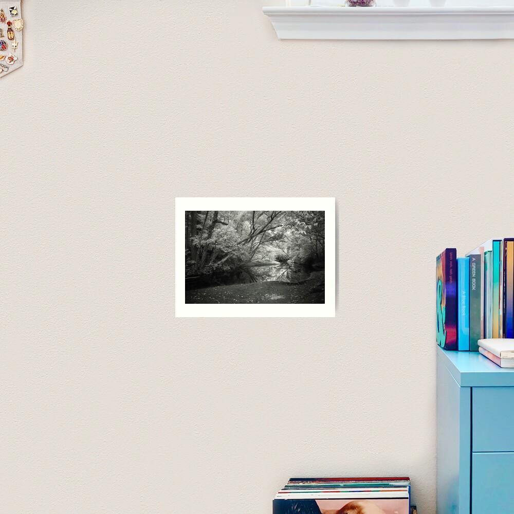 Reflecting infrared Art Print