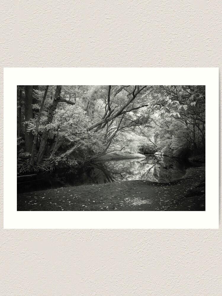 Alternate view of Reflecting infrared Art Print