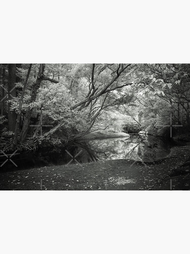 Reflecting infrared by MelBrackstone
