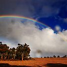 Rainbow 3 by Eve Parry