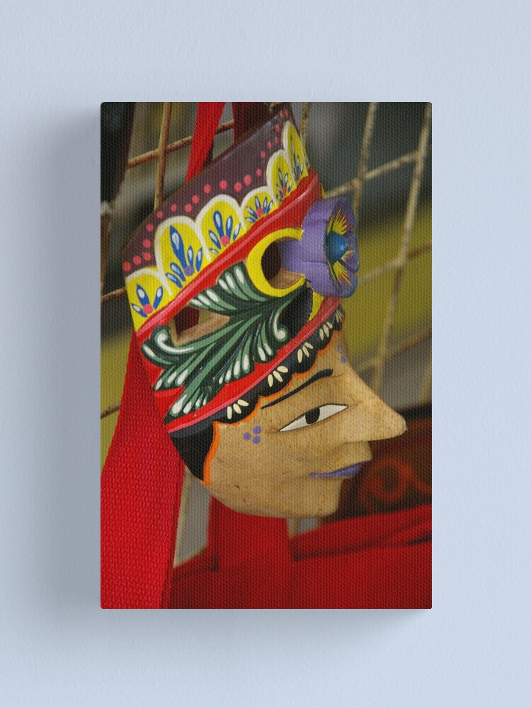 Alternate view of Face Facts Canvas Print
