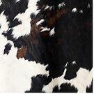 Cowhide Leather by Neli Dimitrova