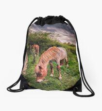 Two Horses Feeding Drawstring Bag
