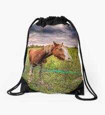 Two Horses Feeding In A Field Drawstring Bag