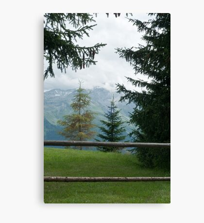 a gate Canvas Print
