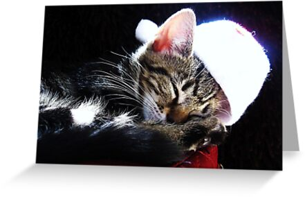 We wish you a Xmas Kitty by Ladymoose