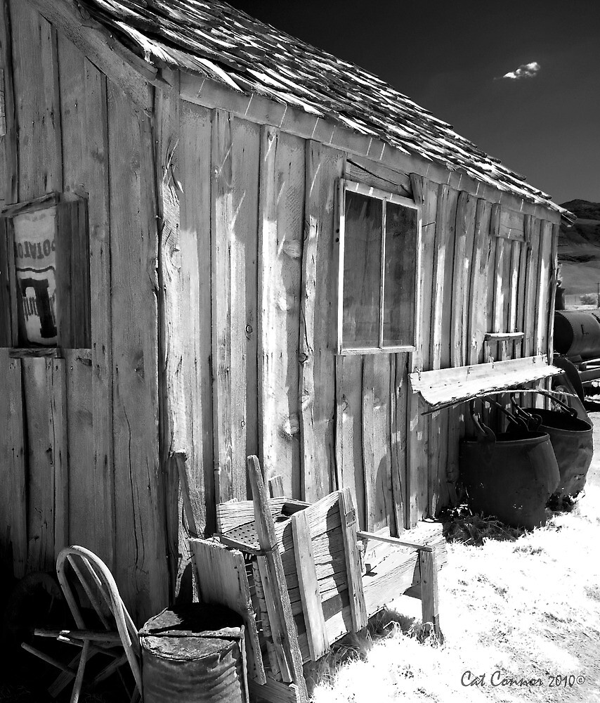 Old Miners Shack by Cat Connor