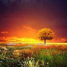 «Puesta de sol» de baxiaart