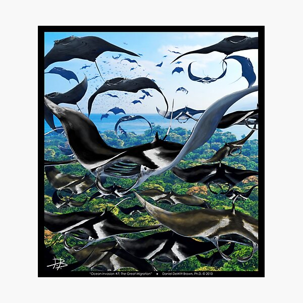 Ocean Invasion #7: The Great Migration Photographic Print